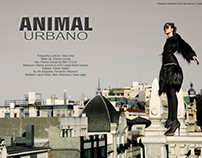 Animal Urbano by Chema Juncos
