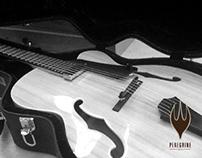Peregrine Guitars Branding Concept
