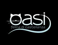 oasi felina - castellanza