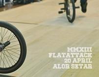 FLATATTACK 2013