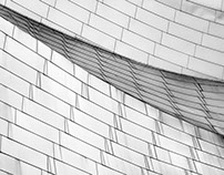 B&W architectural photographs of Frank Gehry buildings.