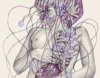 Jellyfish VIII