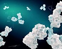 Antibody CGI