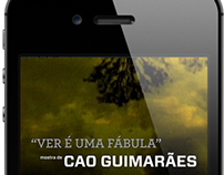 Cao Guimarães [ Guia / APP - ITAÚ CULTURAL ]