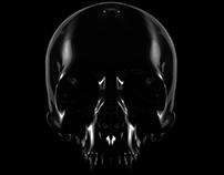 Skull ID
