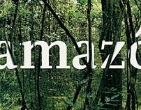 Amazônia, na Trilha da Floresta
