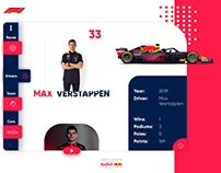 Red Bull Racing Formula One