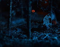 GRAVES (Halloween miniature)