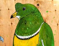 Pop Brixton - pigeons