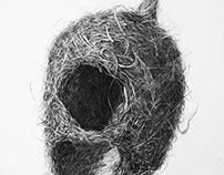 5 Bird Nests