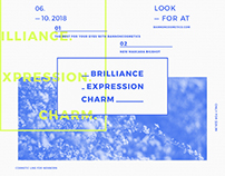 Brilliance | Modern and Creative Templates Suite
