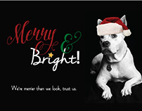 Bulldog Strategy Group Holiday Cards - multiple years