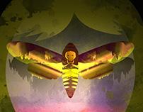 mothgirl