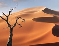 3D Landscape - Namibia
