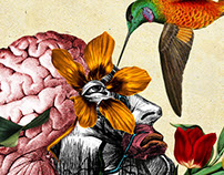 Naturalist illustration for psychiatry clinic.