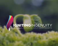 Igniting Ingenuity