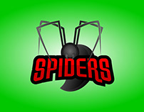 Spiders concept logo