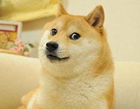 Doge GIF