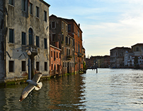 Venice and the Canals