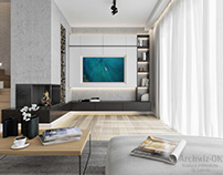 Visualization of modern interior in one family house