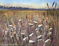Flower Field, pastel on watercolour paper