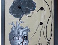 """""""استمع لصوت عقلك وهمس قلبك  """""""