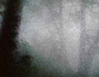 Robert Eustace: 'Through a Darkening Wood' - Suite