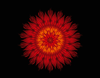 Mandala cards for Adrienne Feller Natur Cosmetics