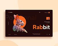 Rabbit UI concept.