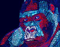 Gorillla