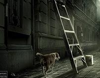 Seguro Mascotas / Banco Ripley