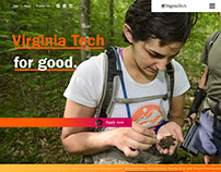 2016 Virginia Tech Admissions