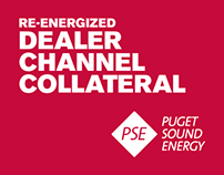 Dealer Channel Collateral