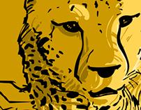 Chitas. Cheetahs. Guepardos