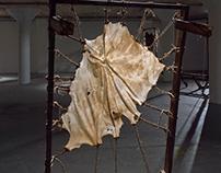 Anthony DiMezza Exhibition