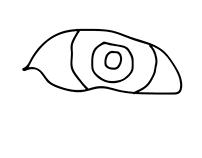 Haiku Animation