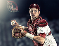 University of South Carolina Baseball