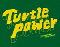 Turtle Power (2013)