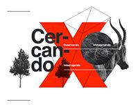 TedX Como