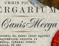 Urbis Pictus - Mergarium | 2007