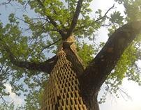 TREE WRAP VI