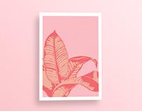 'Palm Springs' Pink Tropical Leaf Wall Art Print
