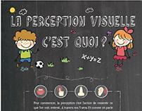La perception visuelle c'est quoi ?
