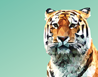 Go Get 'Em Tiger, 2016