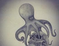 octopus & skull
