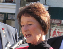 Sharon Bulova, Fairfax County Board of Supervisors