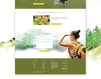Aesthetics Practice Website Redesign