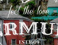 Vintage Bermuda Logos