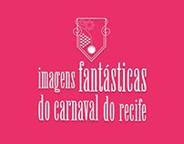 Imagens Fantásticas do Carnaval do Recife