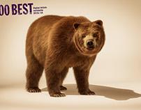CGI Bear